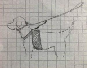 Dessin système safety entre chien et look