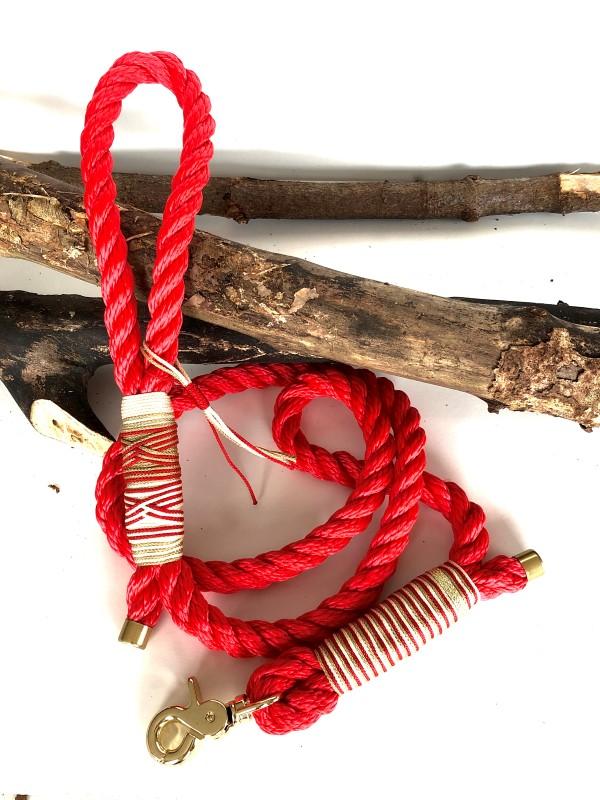 entre chien et look - Ensemble laisse et collier pour chien - Strawberry 07