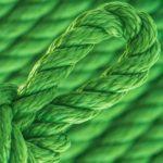 vert-sapin-ppm-cordage-torsade-o-10-mm-ecl