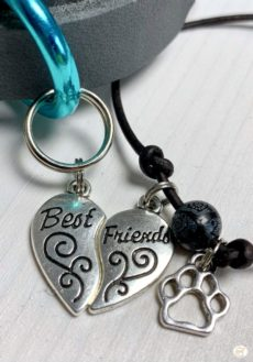 entre chien et look - Bracelet Best Friends (8)
