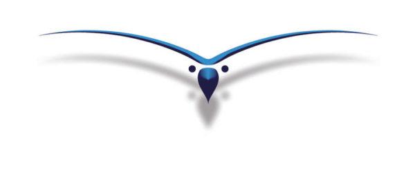 Logo eagles concept