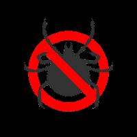 Stop les tiques sur les chiens